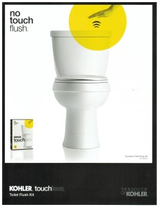 Touchless Flush